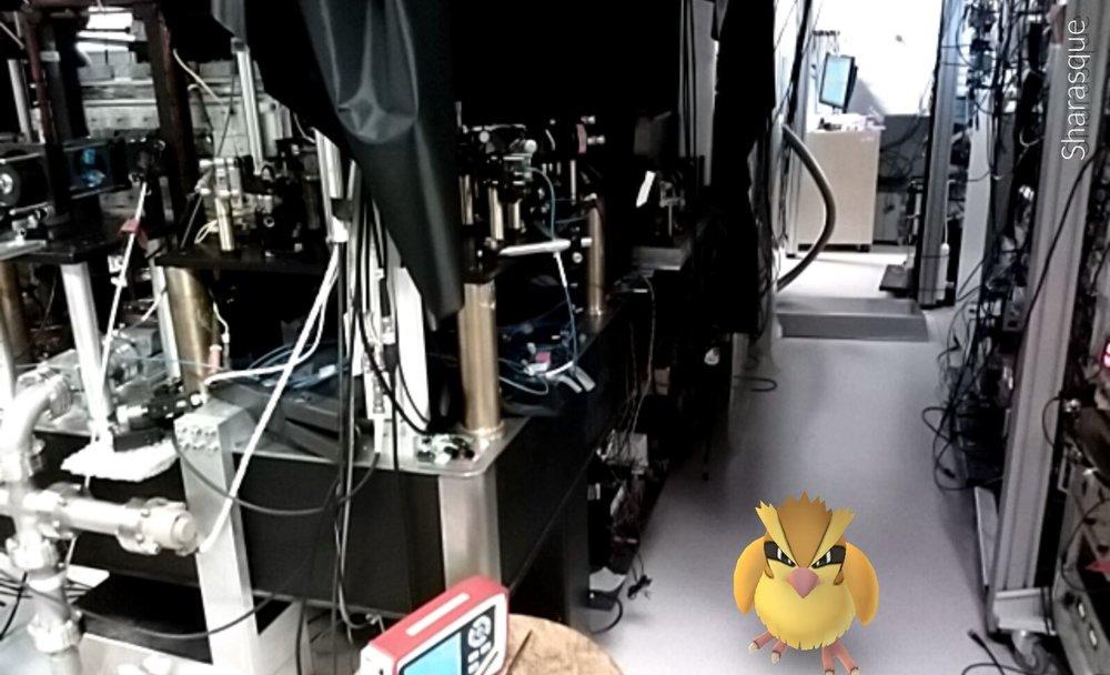 Pokemon_QM.jpg