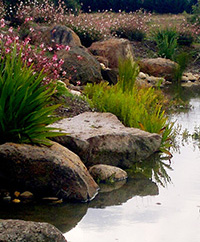 river_rocks.jpg
