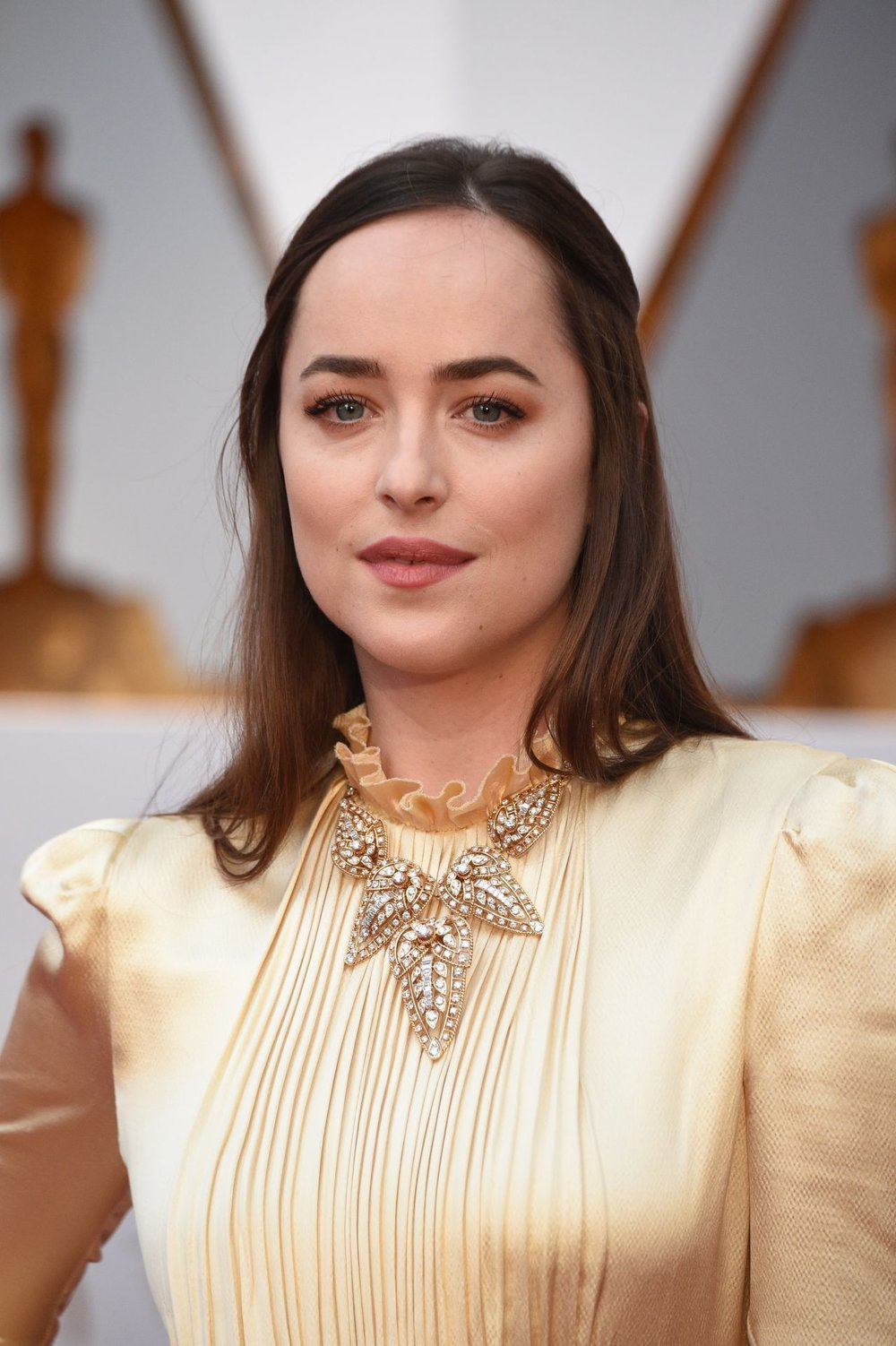 dakota-johnson-oscars-2017-red-carpet-in-hollywood-1.jpg