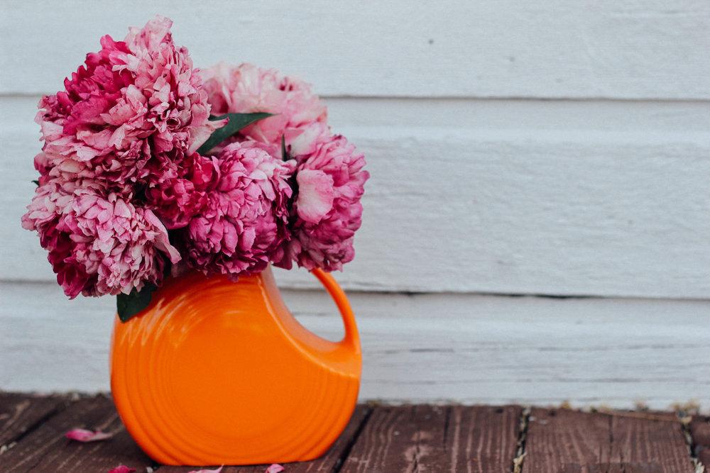 Flowers by Meg Neilson