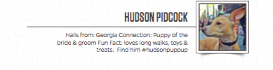 Last, but not least, Hudson!