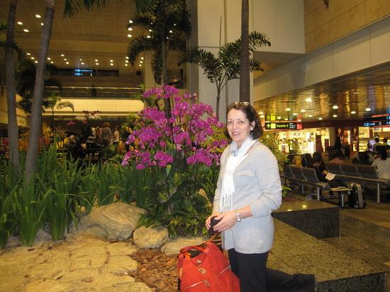 1.1300629823.singapore-flowers.jpg