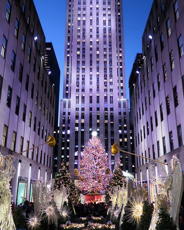 """It's a beaut, Clarke!"" #rockefellercenter #christmastree {NYC Christmas walking tour on the blog!}"