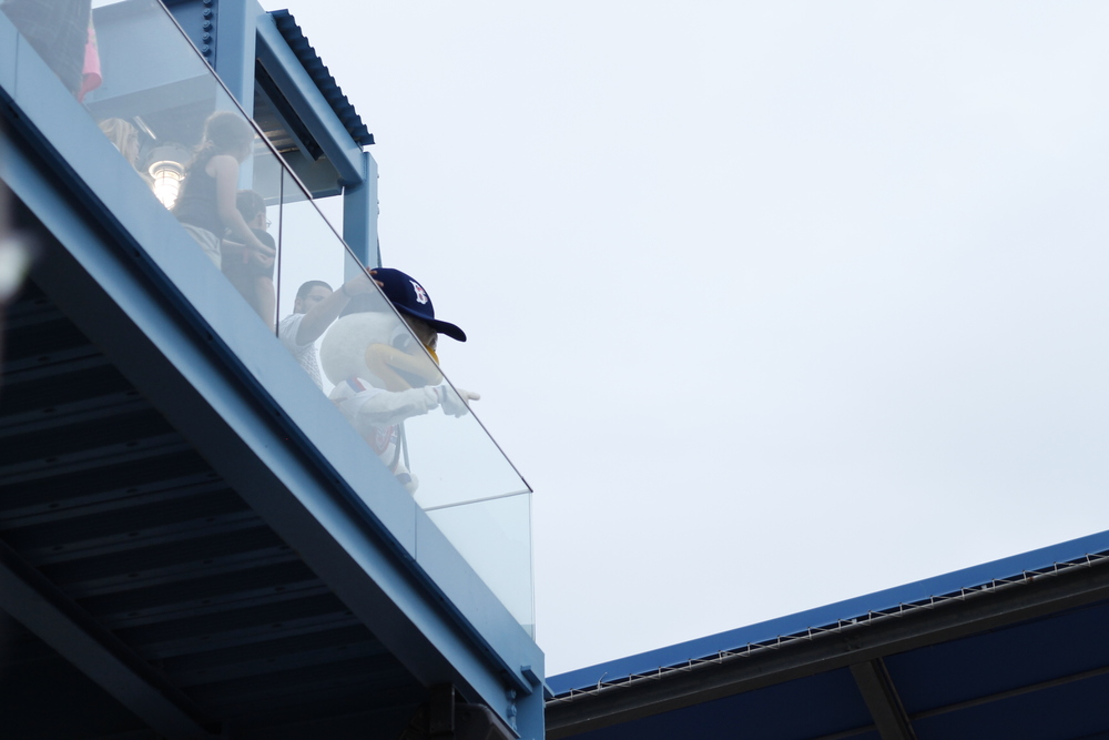 The Brooklyn Cyclones mascot - Sandy the Seagull - throwing tee shirts at fans. And being generally creepy.