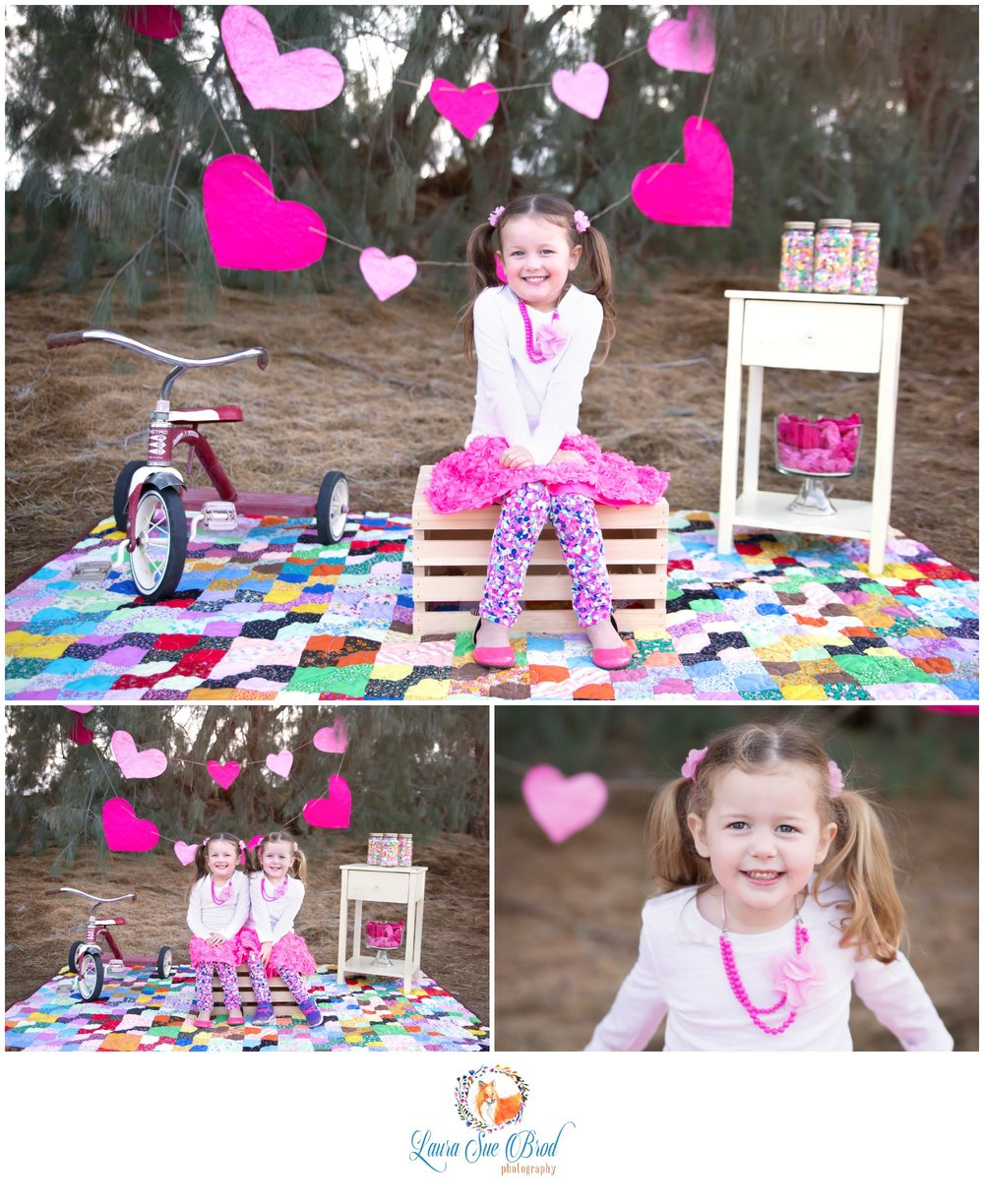Valentine Mini-Sessions.    Laura Sue Brod Photography - 2016  www.laurasuebrod.com
