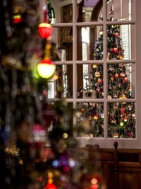 The 50's tree in the Octagon room at the Robbins Hunter Museum.