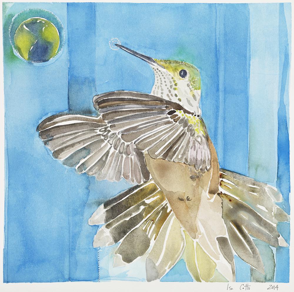 Hummingbird and Earth
