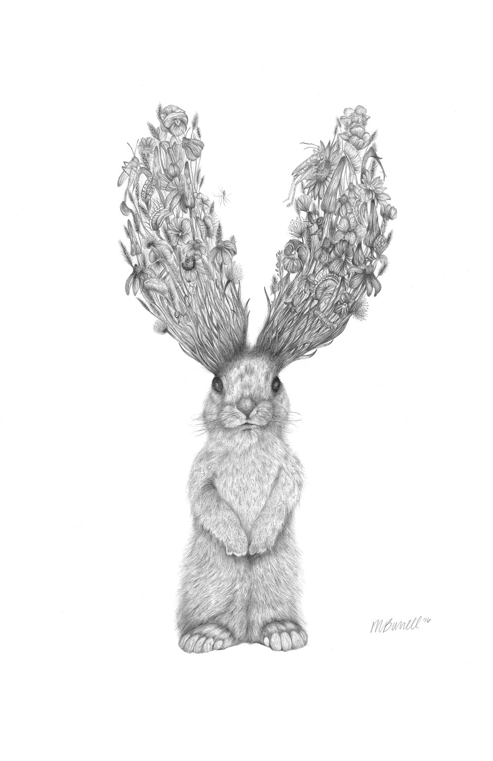 """""""Jackson"""", graphite drawing, 18"""" x 24"""",  2016, and is part of the Migration  Series."""