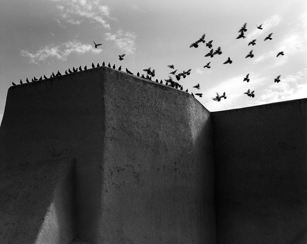 Channeling Ansel Adams at San Francisco de Assisi Mission Church   in Taos. The pigeons being cooperative in this particular moment.