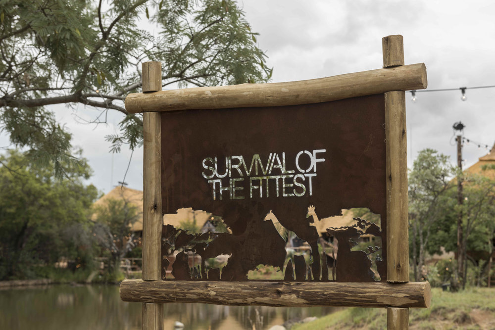 SURVIVAL_OF_THE_FITTEST_THE_LODGE_01.JPG