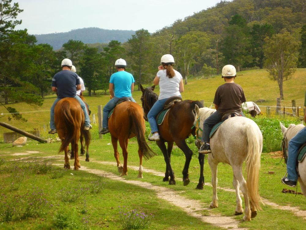 horse-riding August 1.jpg