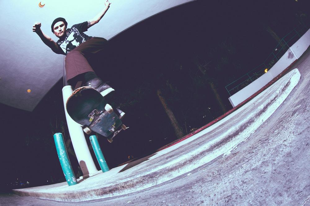 Matt Nespor - Ollie Over, Lipslide