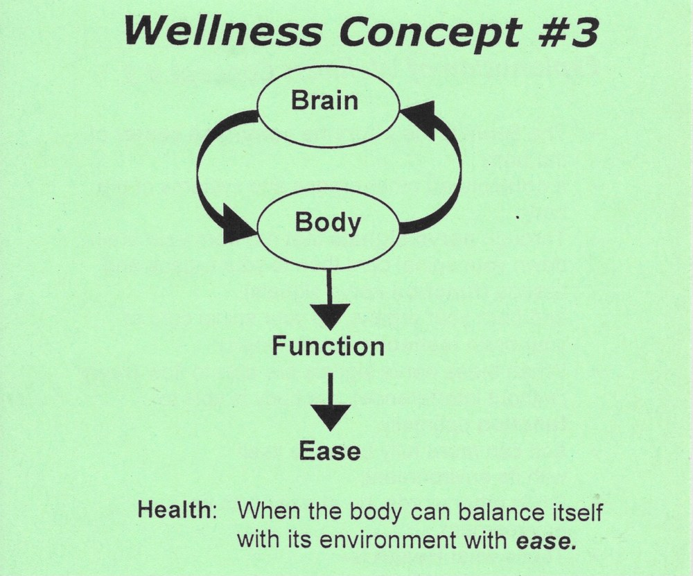 Wellness Concept 3.jpeg