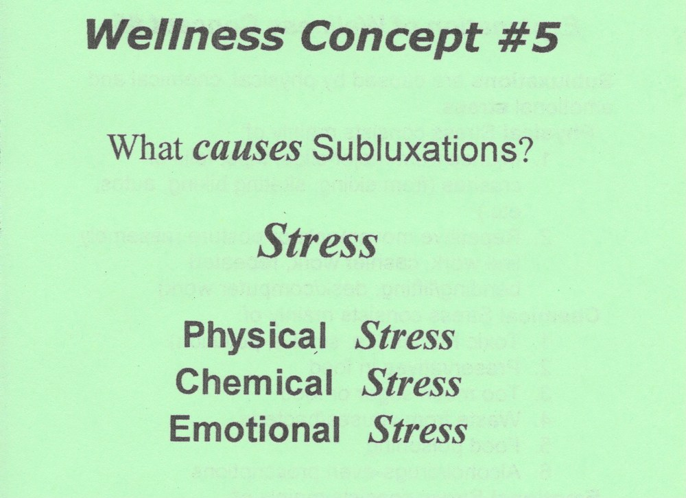 Wellness Concept 5.jpeg