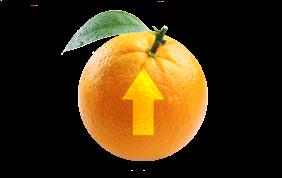 orangesmall.png
