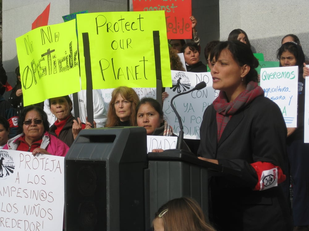 MarthaProtest.JPG