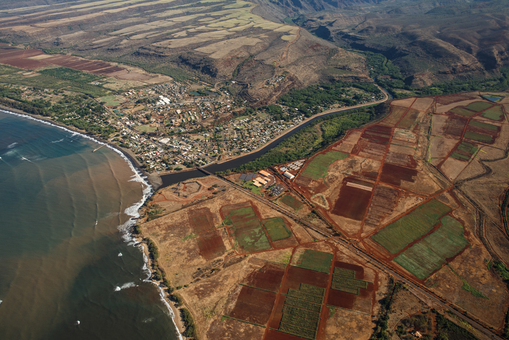 GE Test fields upwind of Waimea river and residences. Photo credit: Makana Designs