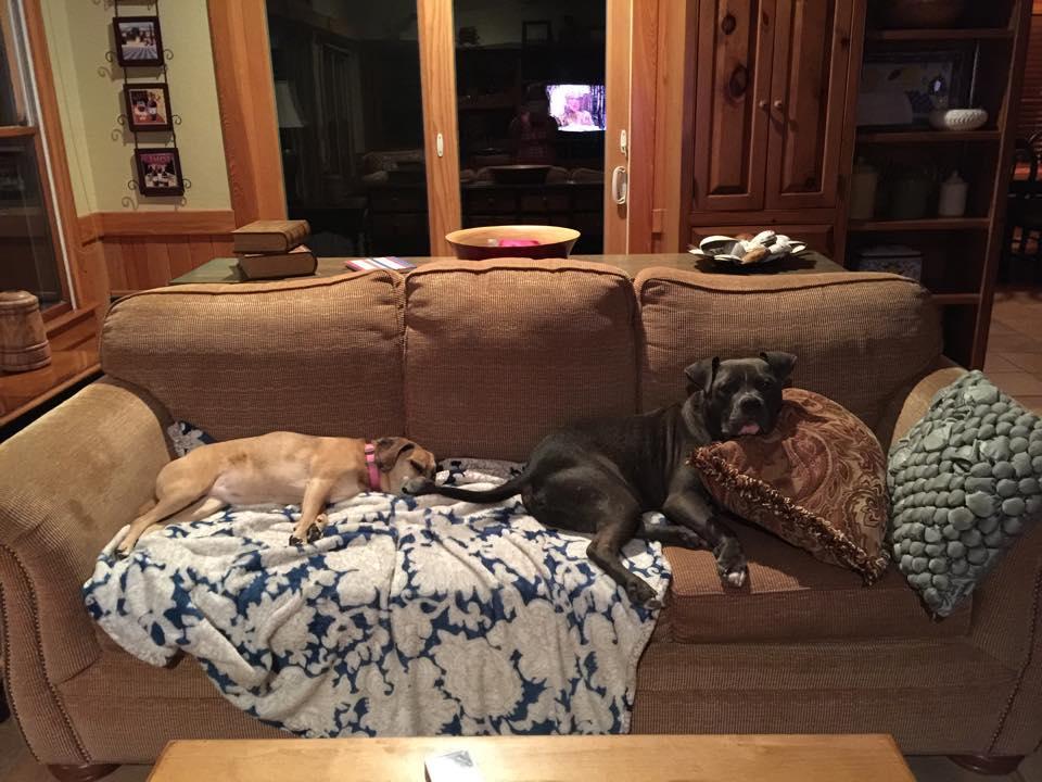 Duke and Sasha