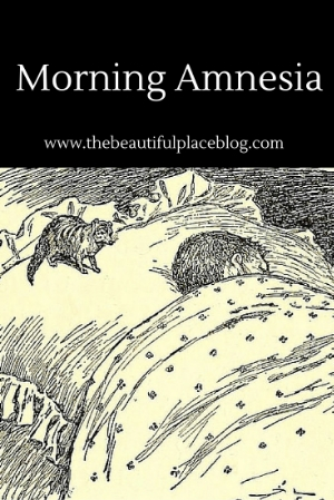 The only thing worse than morning amnesia is waking up with a mongoose on your pillow.