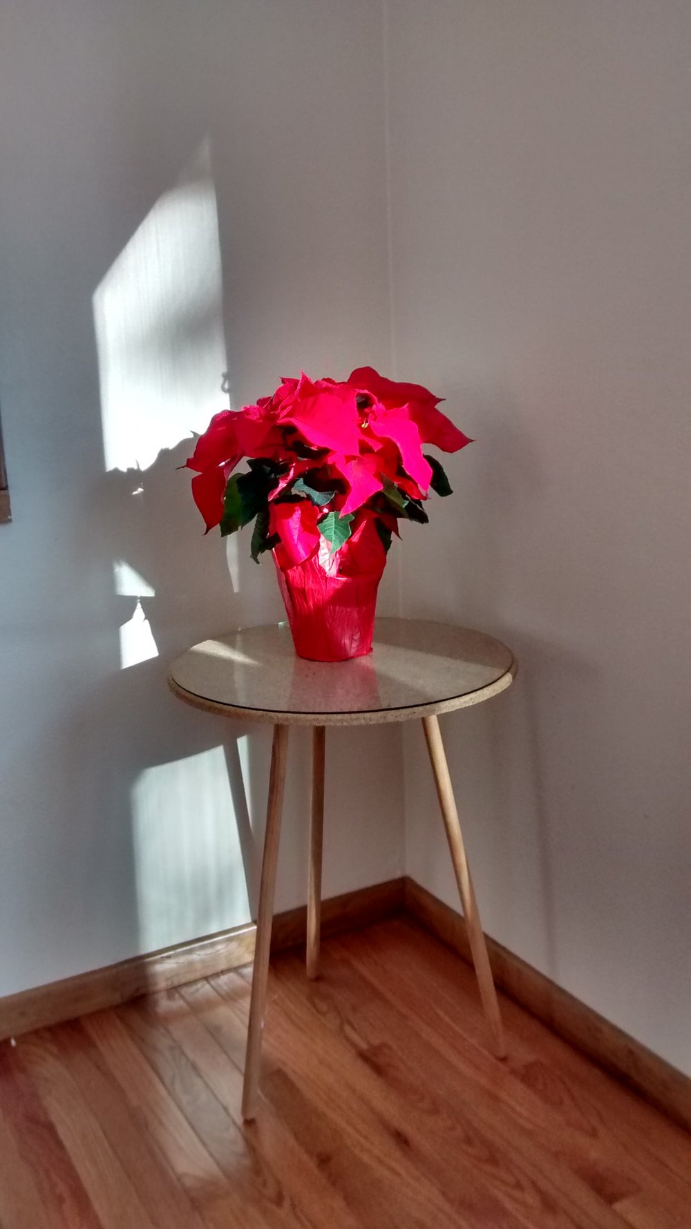 Easy poinsettia combined with a table that will look a lot nicer once I find the tablecloth that goes with it.