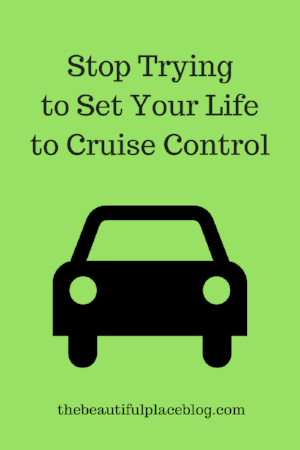 Stop Trying to Set Your Life to Cruise Control.png