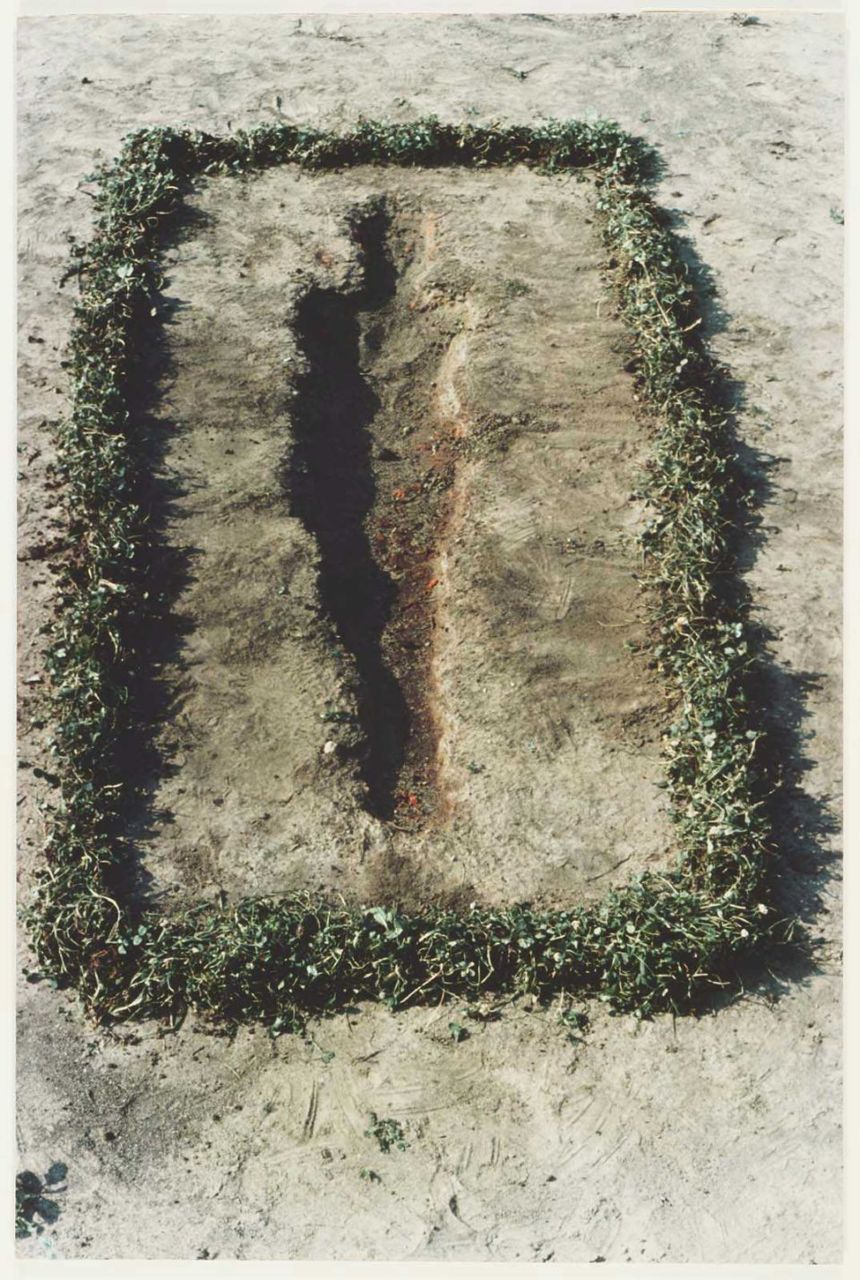 ana-mendieta-earth-work-3.jpg