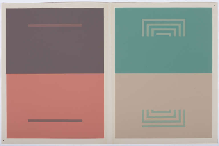 The small rectangles on the left are the 'same color' but appear as two different shades given their interaction with the neighboring colors. The concentric lines on the right are also the 'same color' but appear to be different shades because of their interaction with the surrounding colors.