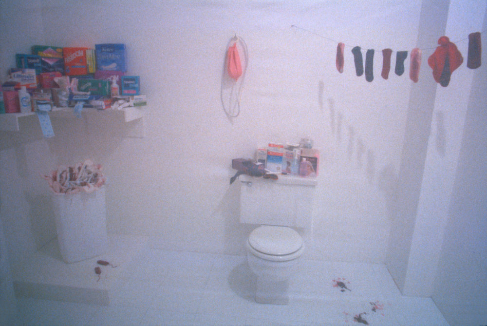 Menstruation_Bathroom_1995_reinstallation_1.jpg