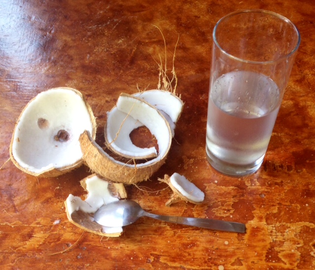What happened last time Rachel went to town on a coconut.