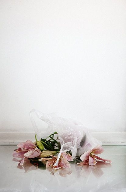 lesthetiquedelinventaire: Diana Luganski