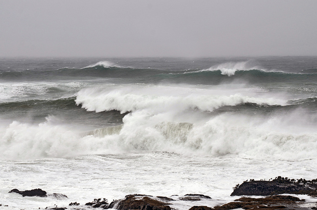birdcagewalk: 4himglory:Storm Surf Busy with the Wind by russell.tomlin on Flickr.