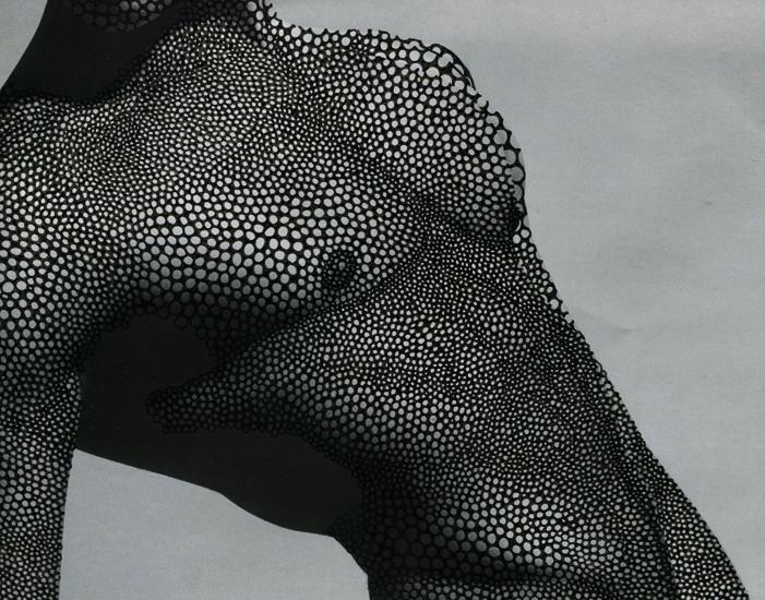 66lanvin: laoblum: by Alana Dee Haynes TORSO………No.7