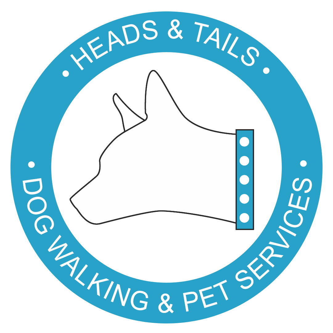 Heads & Tails - Austin Dog Walking Services