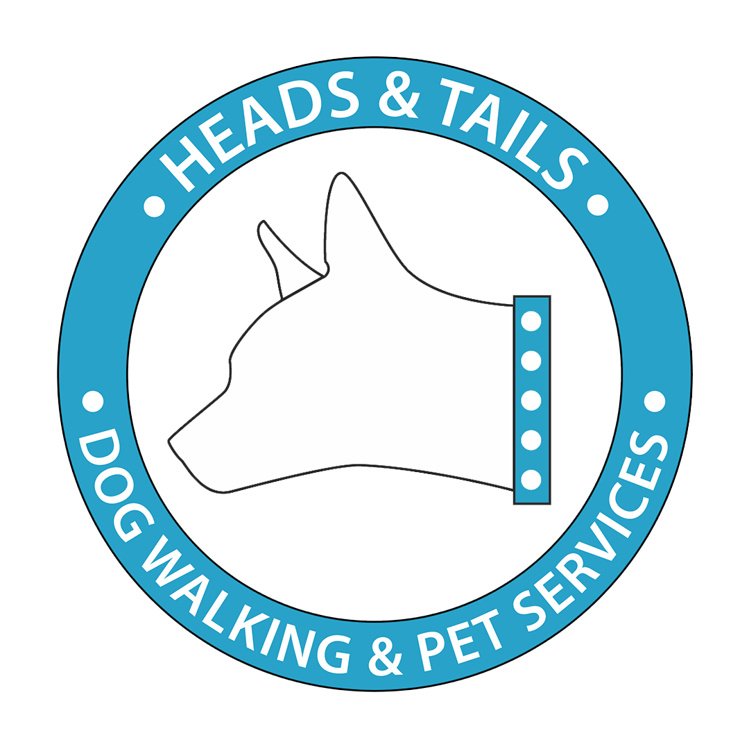 Dog Walking & Cat Sitting Services in Austin, Texas