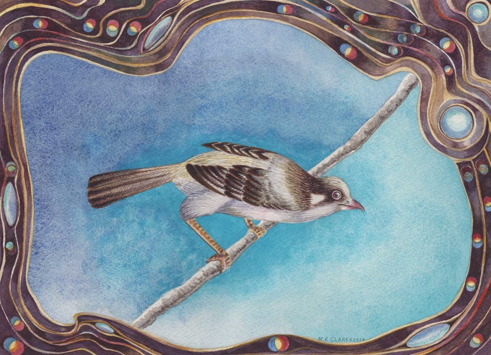 Bird Song watermark web.jpg