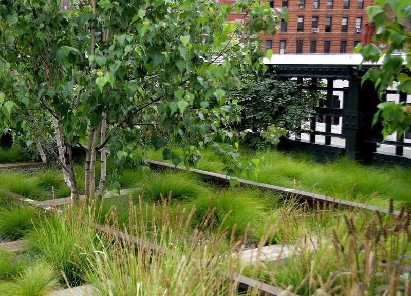 Green Mulch Info Black Birch Landscape Design