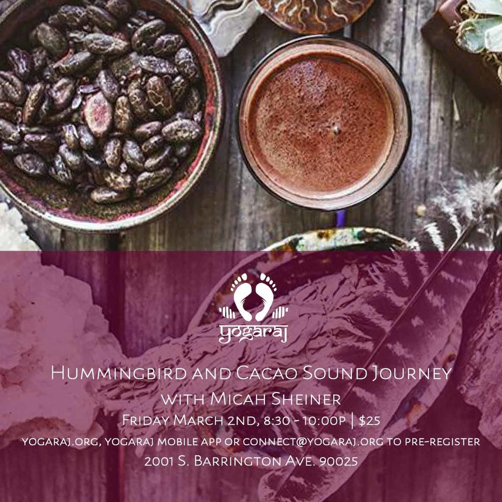2018.03.03.cacaohummingbird.jpg