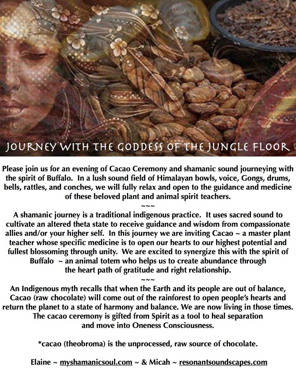buffalo cacao ceremony text.jpg