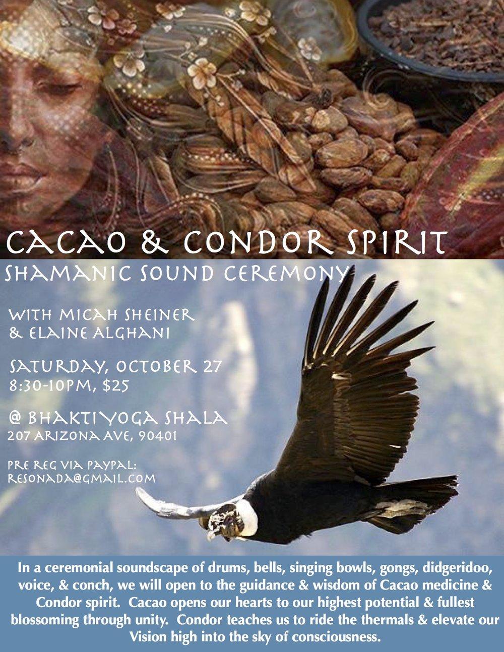 Condor Cacao.jpg