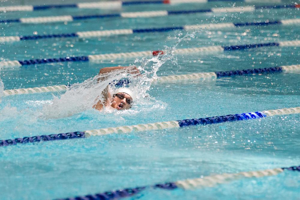 TSKVGSS Swimming Gala 2014-2015 (2014)