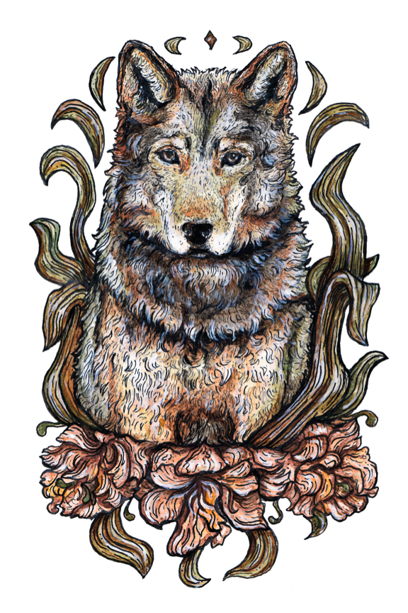 """""""WOLF FLOWER"""" 2017 - INK & WATERCOLOR ON   PAPER"""