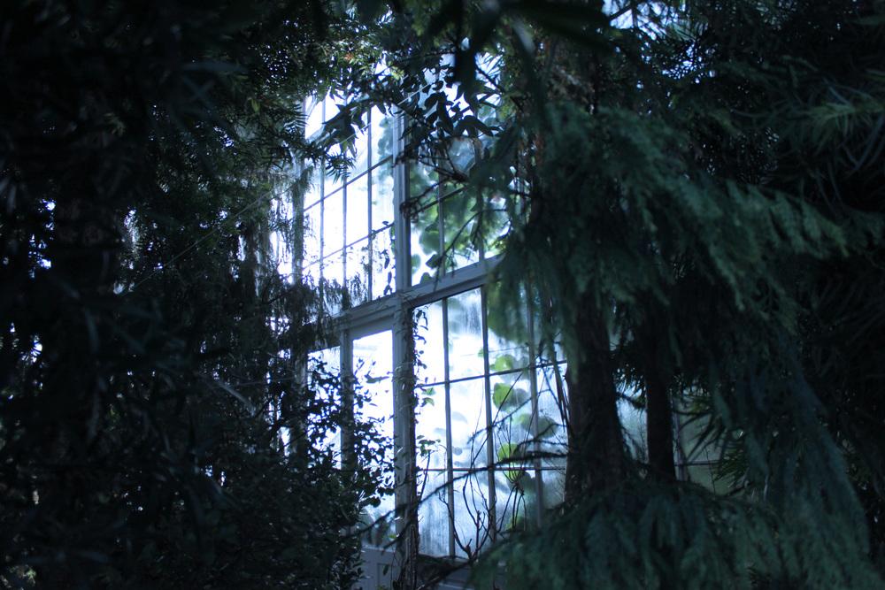 botaniskhave.jpg