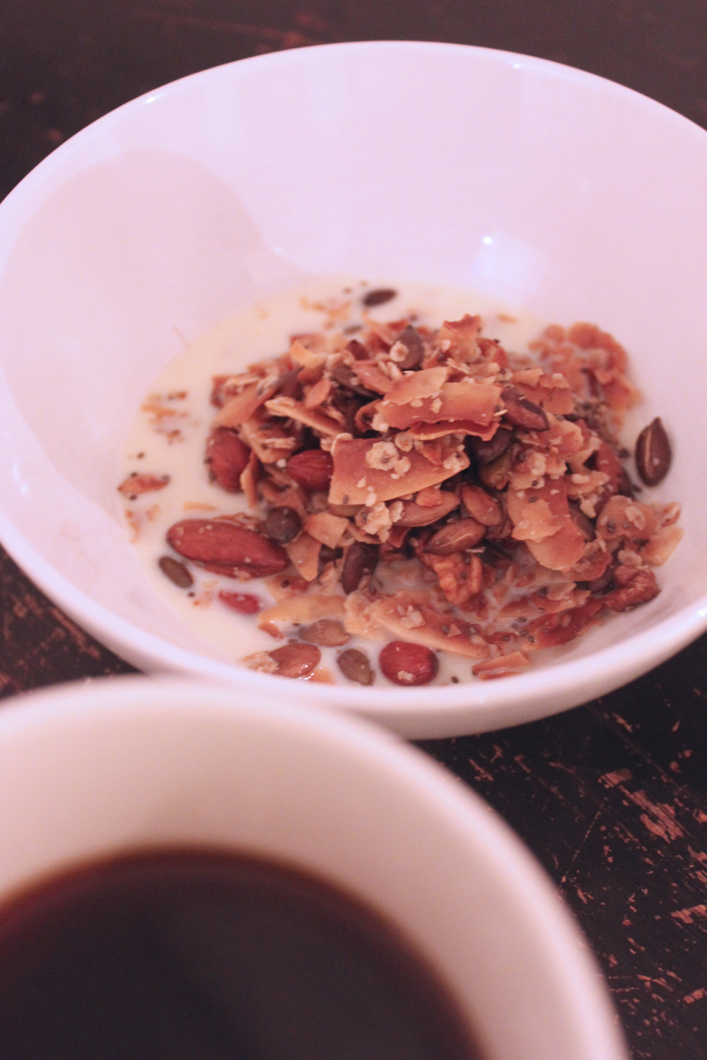 sugarfree-coconut-granola.jpg