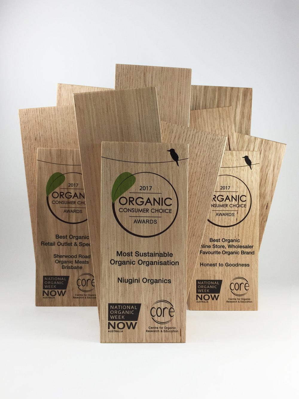consumer-choice-awards-eco-timber-trophy-01.jpg