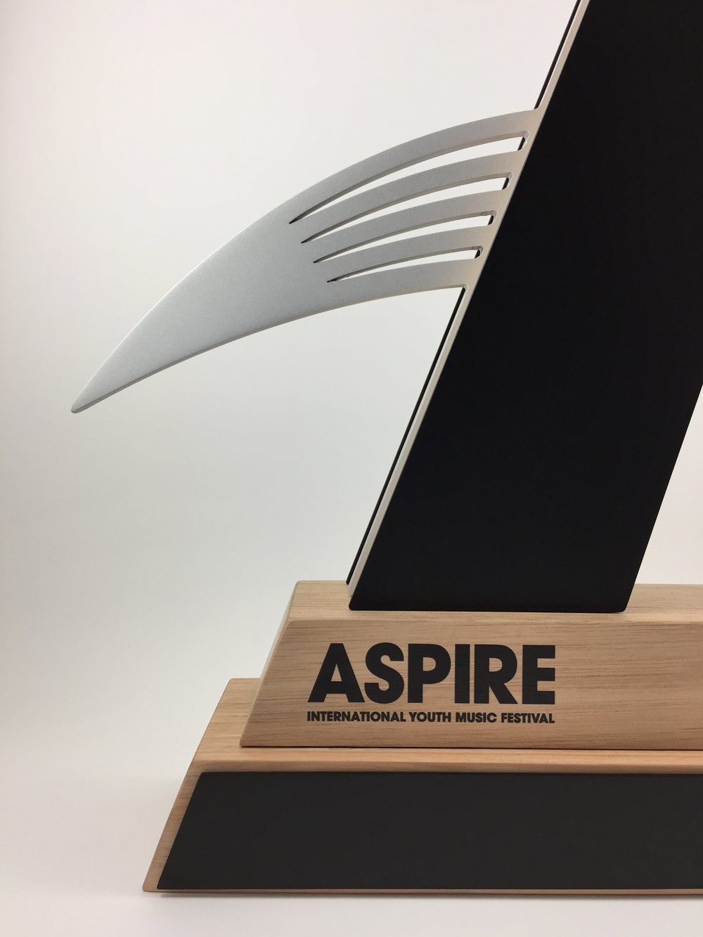 aspire-timber-metal-eco-trophy-awards-06.jpg