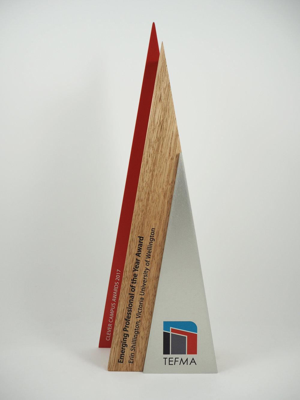 tefma-awards-timber-eco-aluminium-trophy-02.jpg