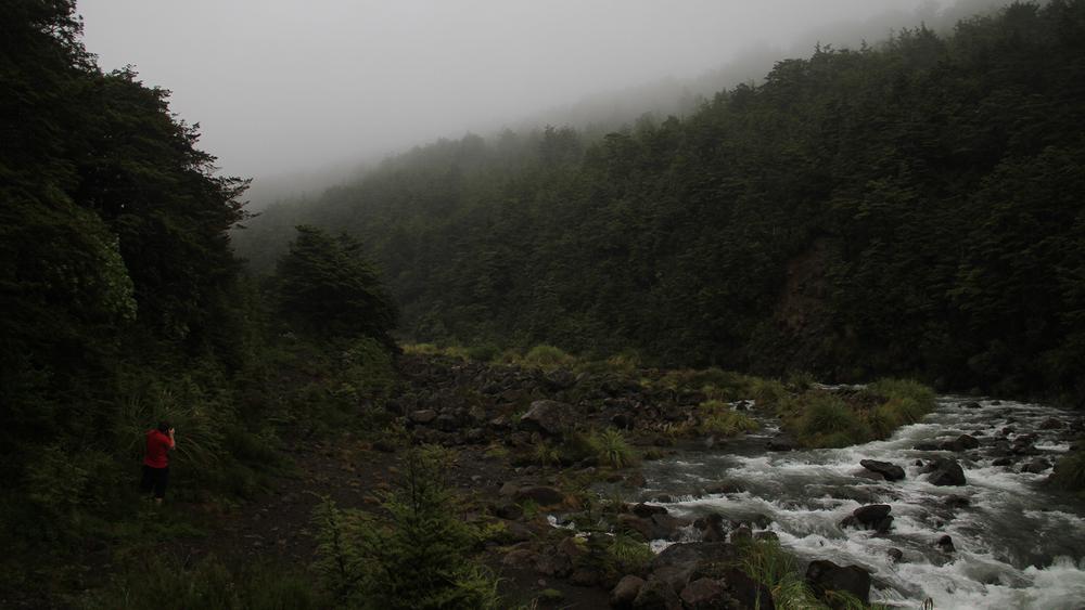 Fotobewerking-jbax-Joris-Bax-Jurassic-New-Zealand-Voor.jpg