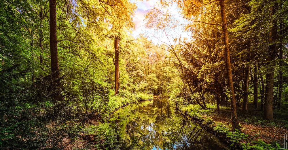 Großer Tiergarten Berlijn - jbax