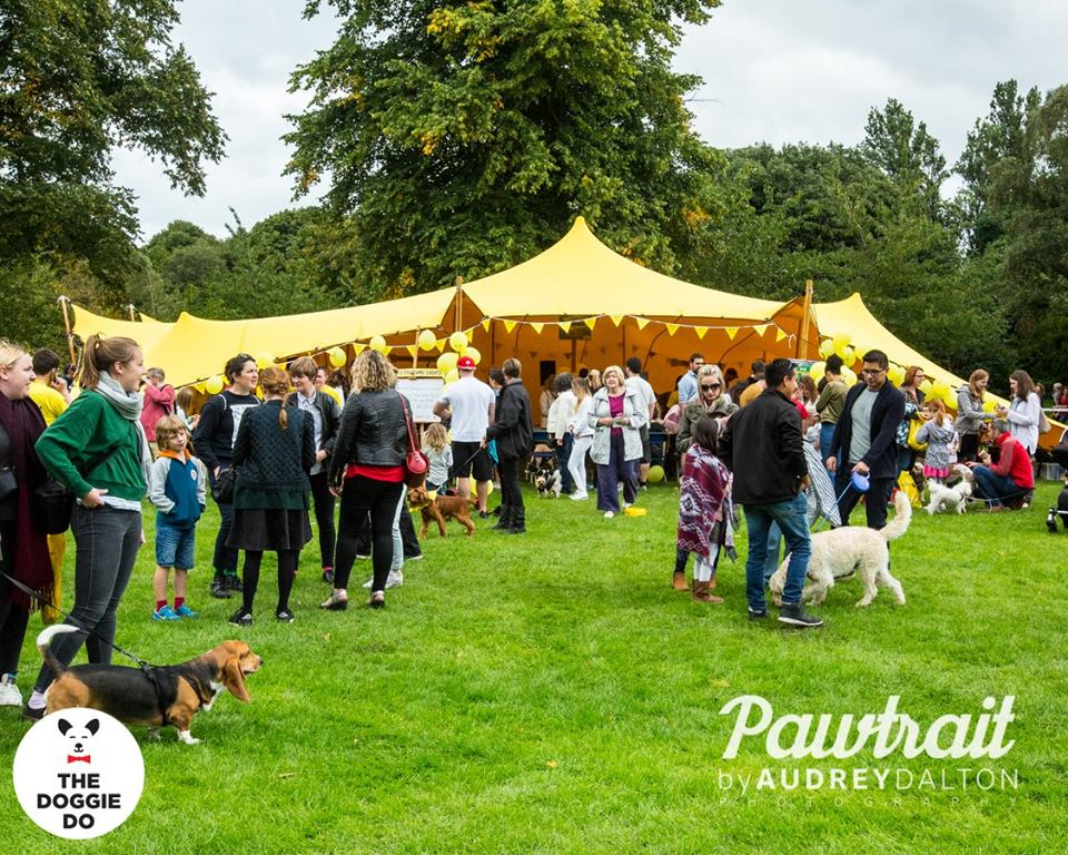 Dogs Trust at The Doggie Do