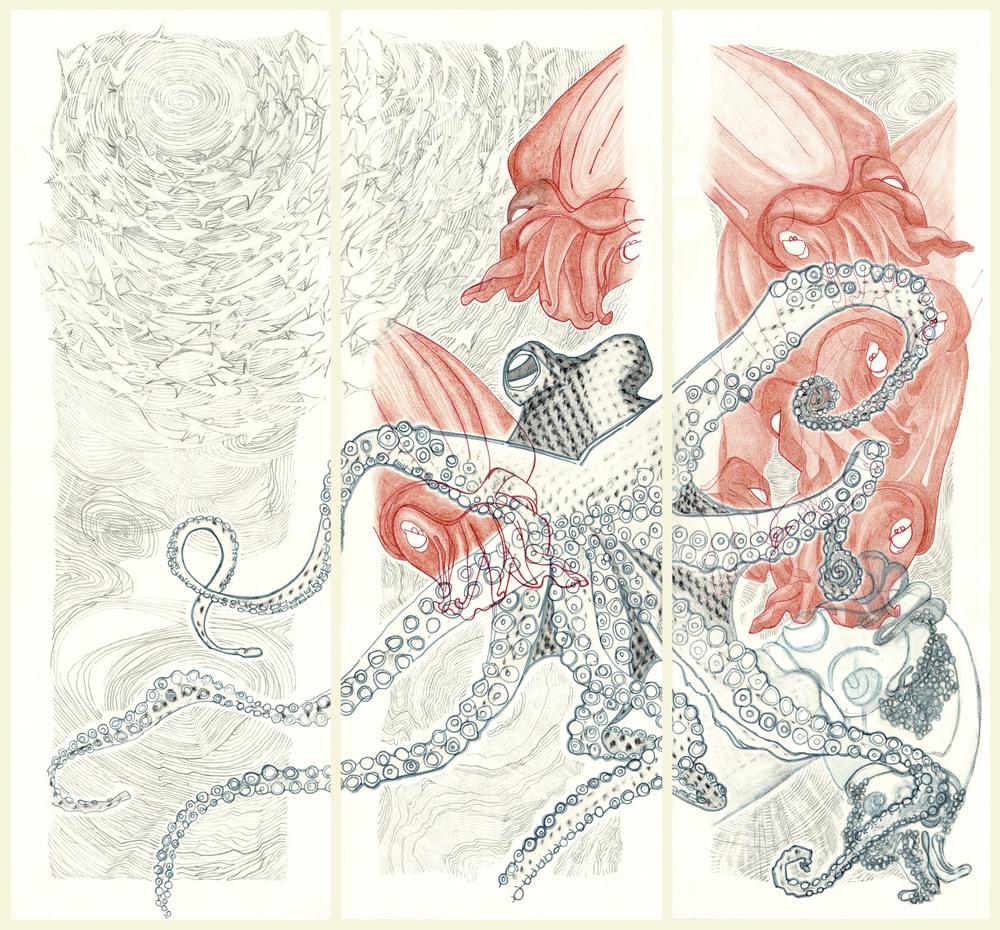 Octopus - Low.jpg